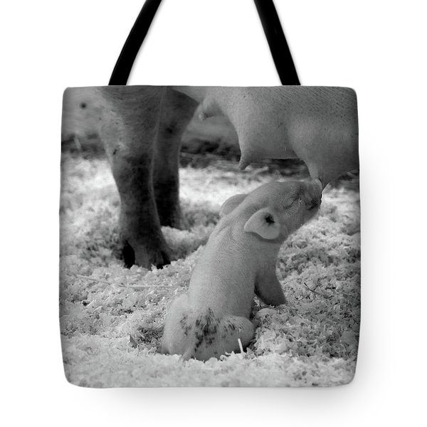 Nuture Tote Bag
