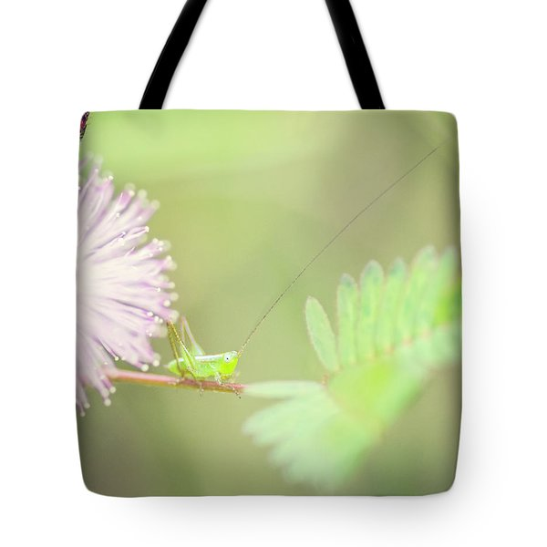 Nymph Tote Bag by Heather Applegate