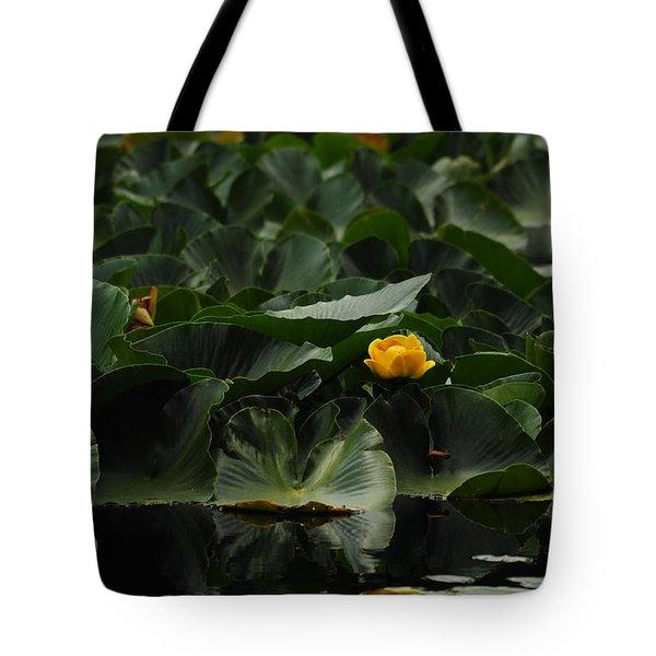Nymph Lake II Tote Bag
