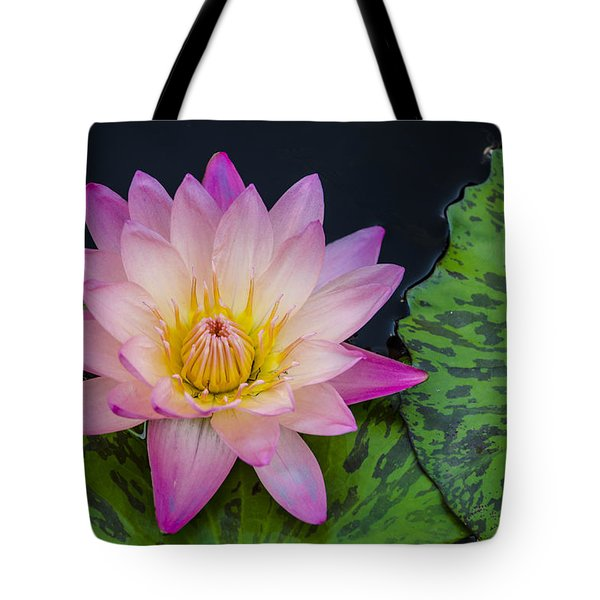 Nymphaea Hot Pink Water Lily Tote Bag