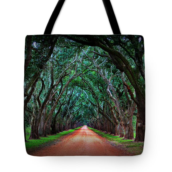 Oak Alley Road Tote Bag by Perry Webster