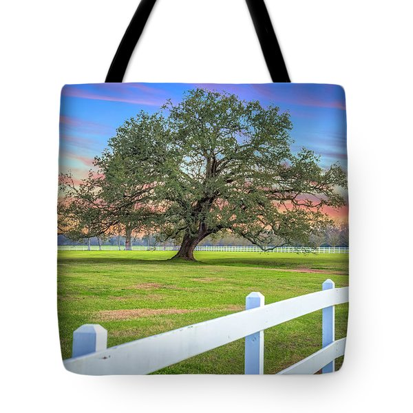 Oak Alley Signature Tree At Sunset Tote Bag