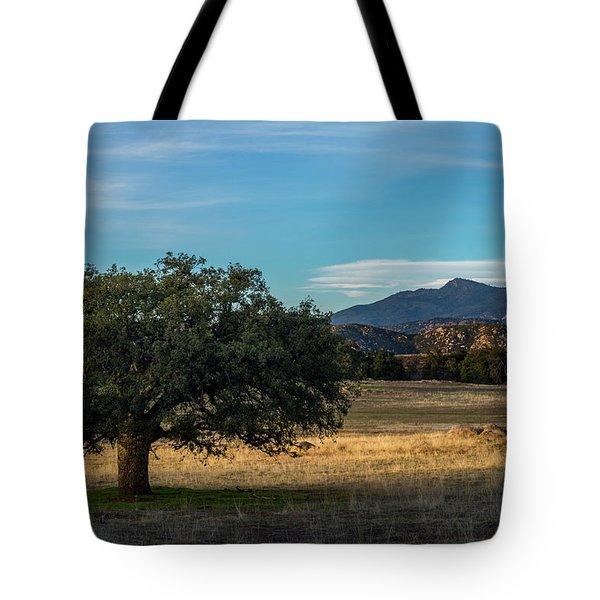 Oak And Cuyamaca Tote Bag
