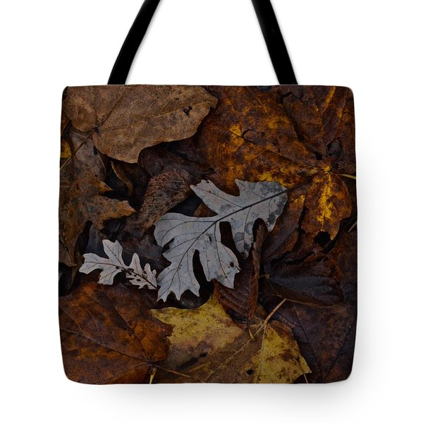 Oak And Maple Leaves Tote Bag