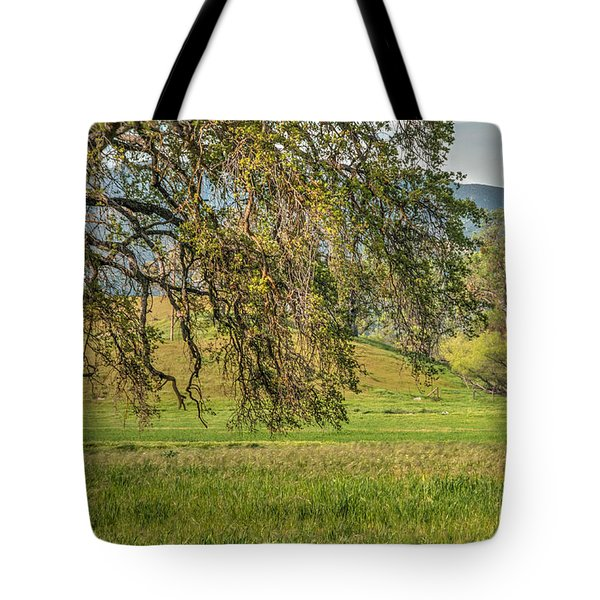 Oak And Windmill In Meadow Tote Bag