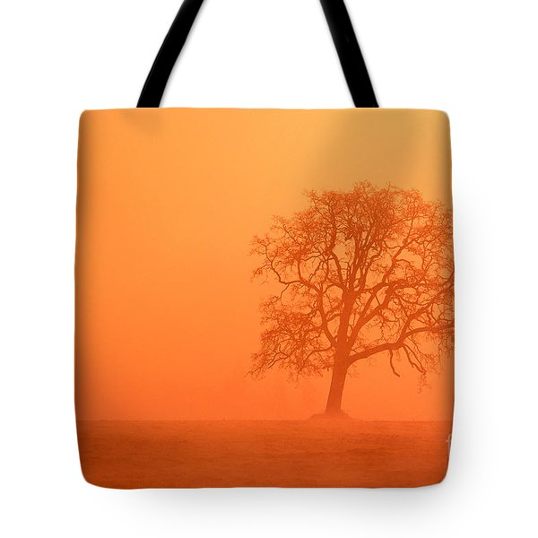 Oak At Sunrise Tote Bag by Greg Vaughn - Printscapes