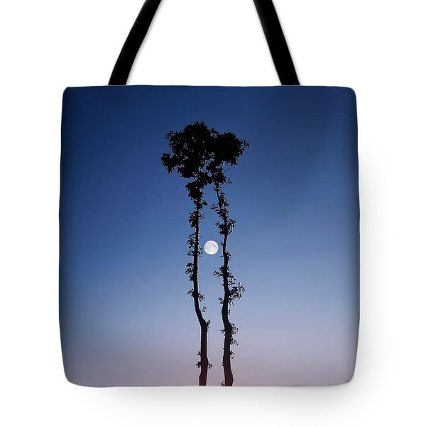 Oak Kissing Tote Bag by Bess Hamiti
