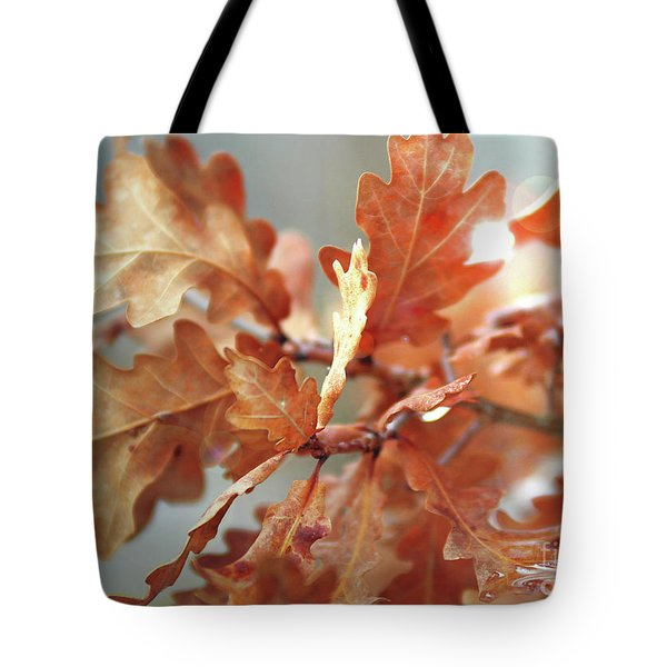 Oak Leaves In Autumn Tote Bag