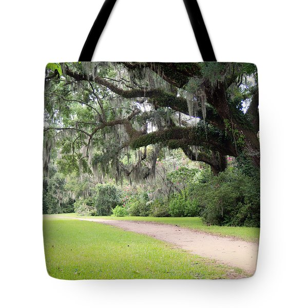 Oak Over The Trail Tote Bag
