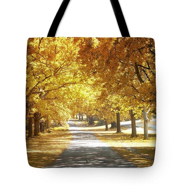 Oak Tree Avenue In Autumn Tote Bag