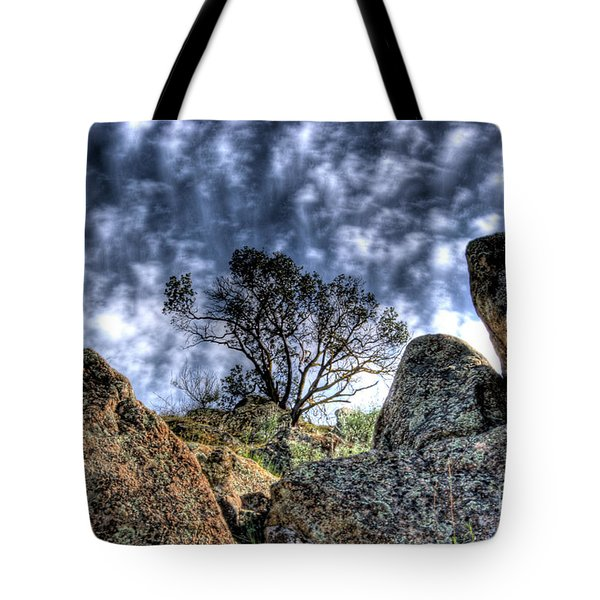 Tote Bag featuring the photograph Oak Tree by Jim and Emily Bush