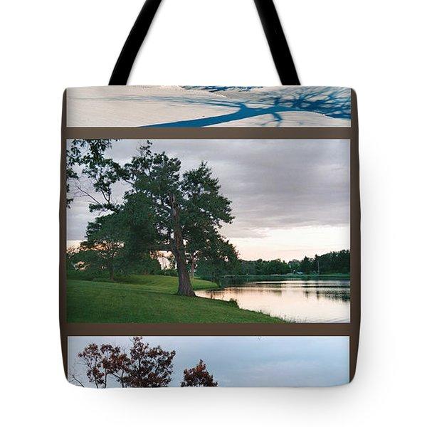 Oak Tree Through Seasons Tote Bag