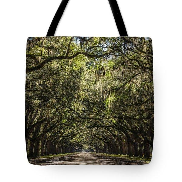 Oak Tree Tunnel #2 Tote Bag