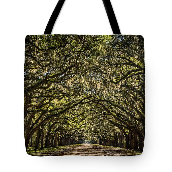 Oak Tree Tunnel Tote Bag
