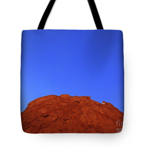 Oatmeal Cookie Tote Bag by Inessa Burlak
