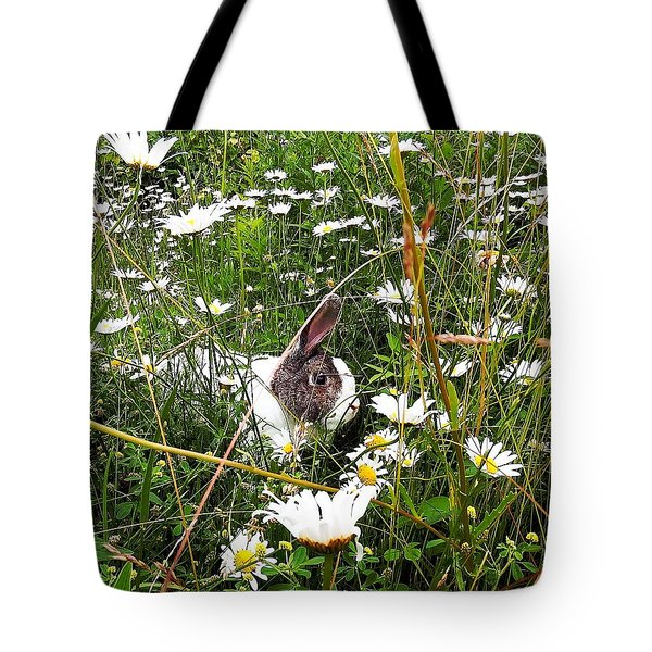 Tote Bag featuring the photograph Obelix And Daisies  by Vicky Tarcau