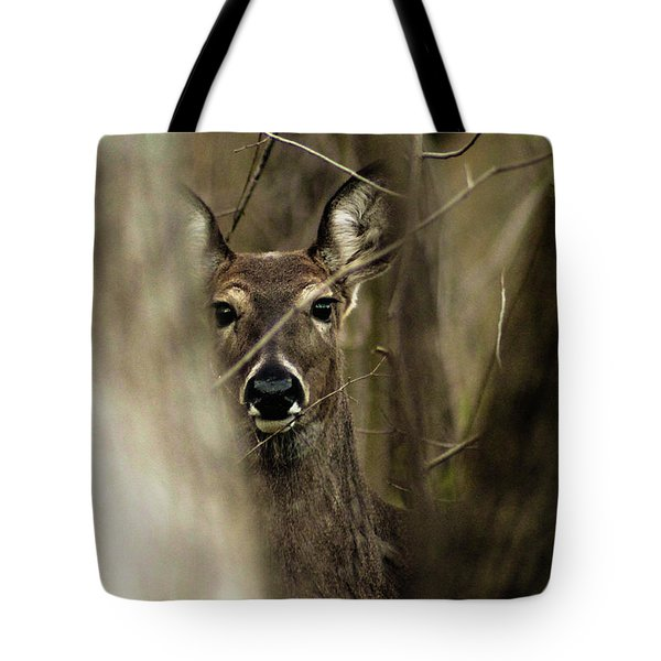 Observed  Tote Bag by Bruce Patrick Smith