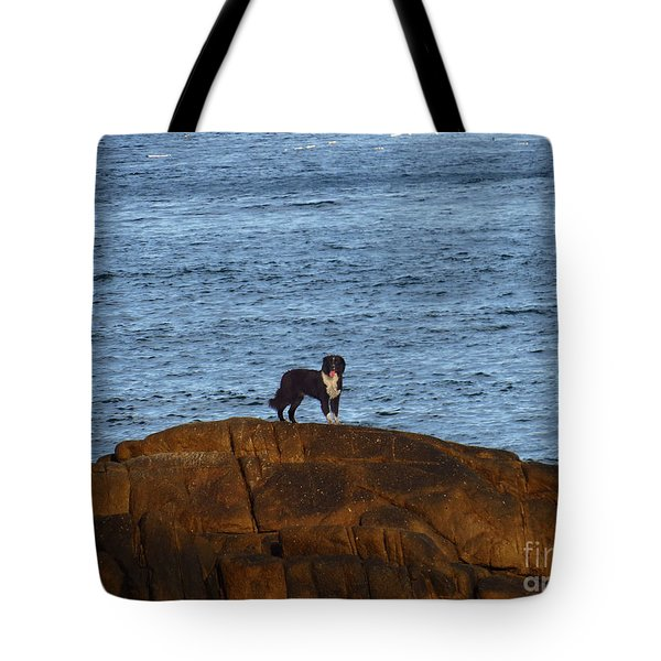 Ocean Dog Tote Bag