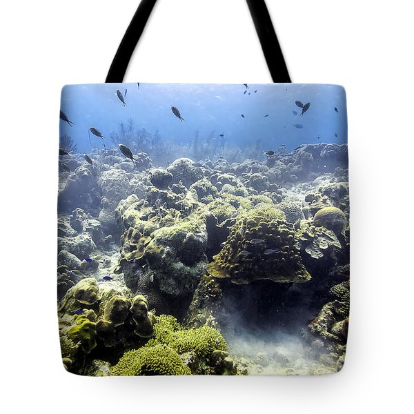 Tote Bag featuring the photograph Ocean Light II by Perla Copernik