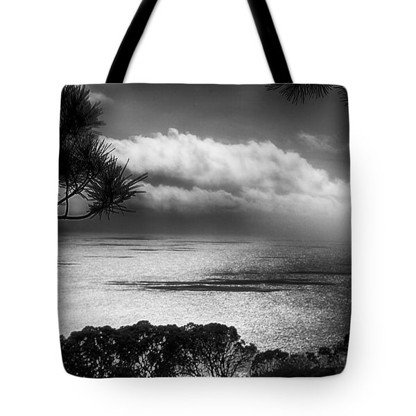 Tote Bag featuring the photograph Ocean Scene by Joseph Hollingsworth