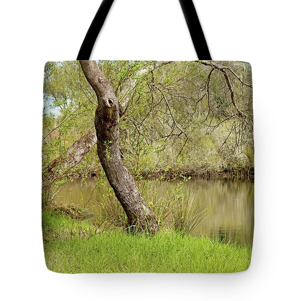 Tote Bag featuring the photograph Oceano Lagoon by Art Block Collections