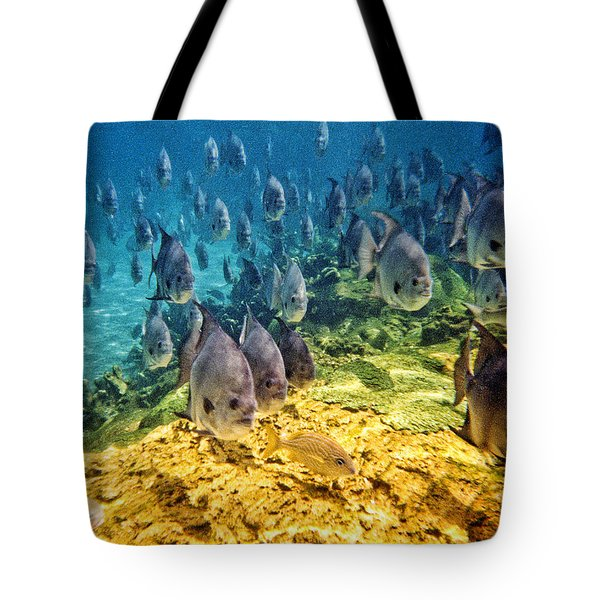 Oceans Below Tote Bag