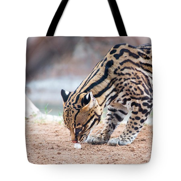 Ocelot And Egg Tote Bag