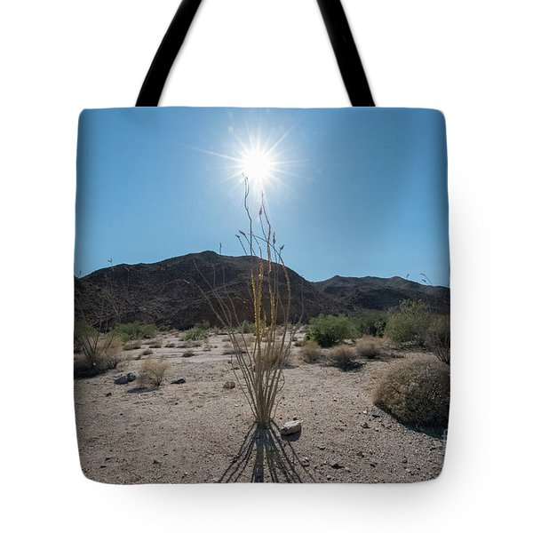 Ocotillo Glow Tote Bag by Robert Loe