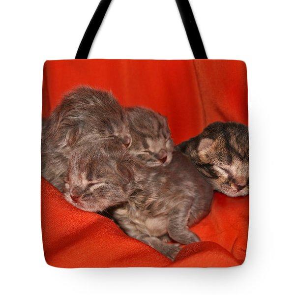 October 2007 Tote Bag