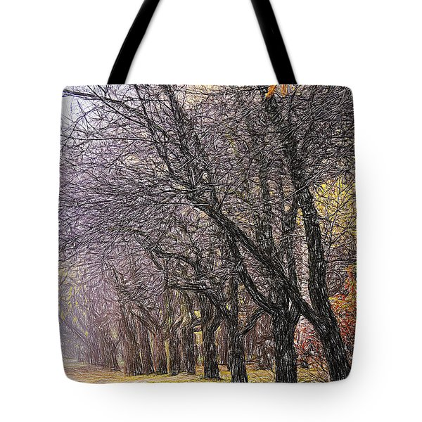 Tote Bag featuring the photograph October 3 by Vladimir Kholostykh