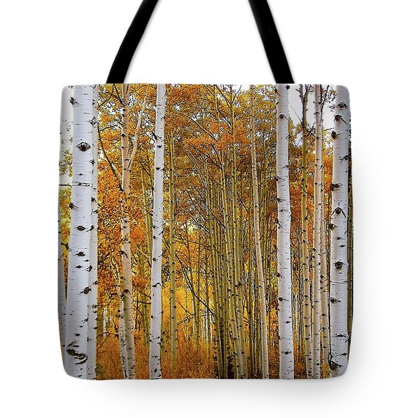 Tote Bag featuring the photograph October Aspen Grove  by Deborah Moen