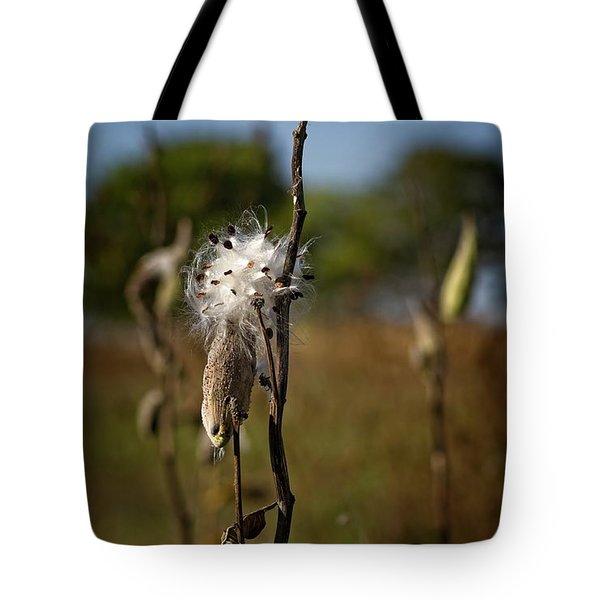 October Forests Tote Bag