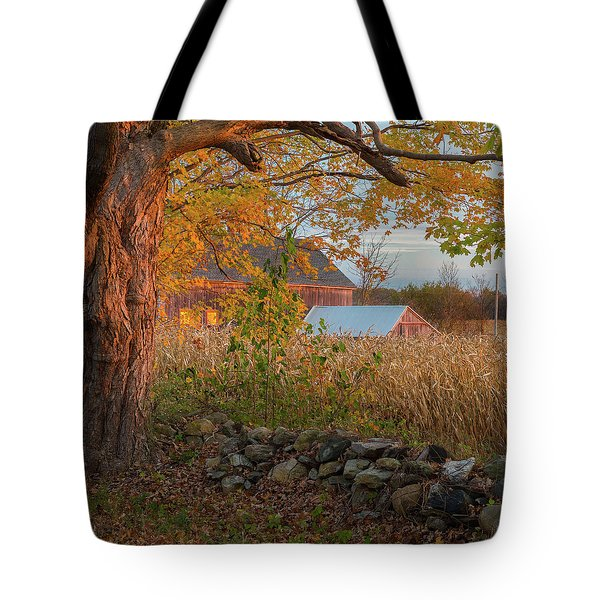 Tote Bag featuring the photograph October Morning 2016 Square by Bill Wakeley