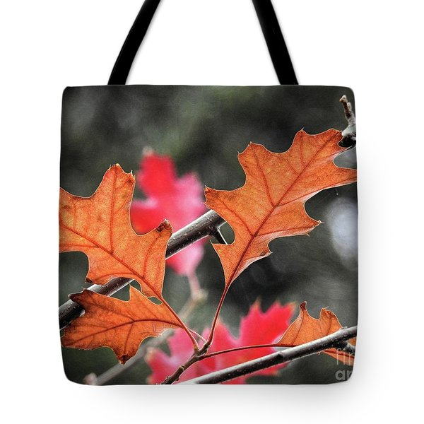 Tote Bag featuring the photograph October by Peggy Hughes