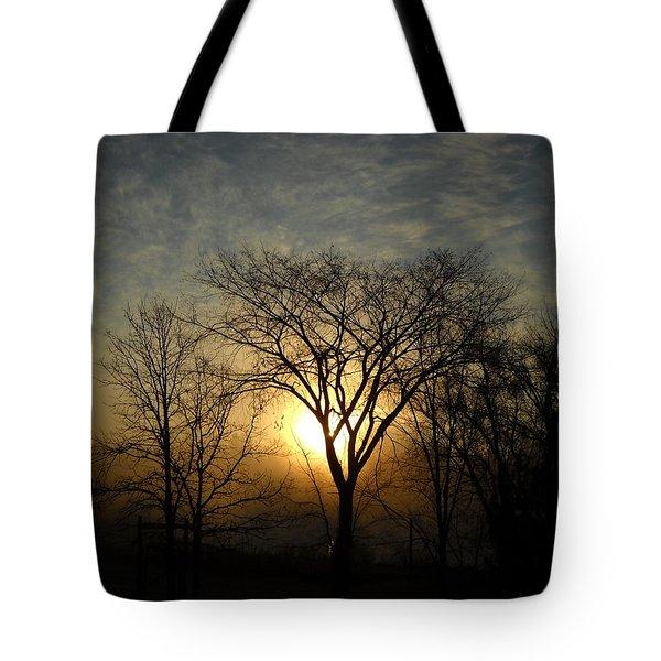 October Sunrise Behind Elm Tree Tote Bag