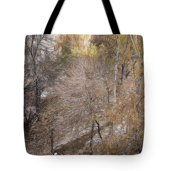 Tote Bag featuring the photograph October by Vladimir Kholostykh