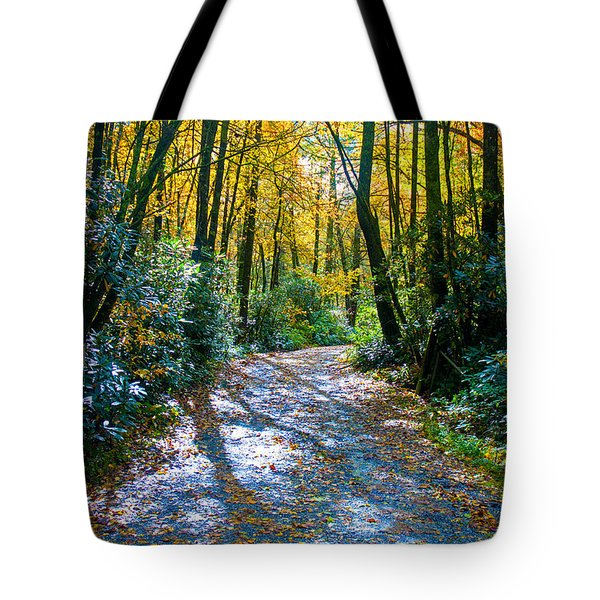 Tote Bag featuring the photograph October's Path by Allen Carroll