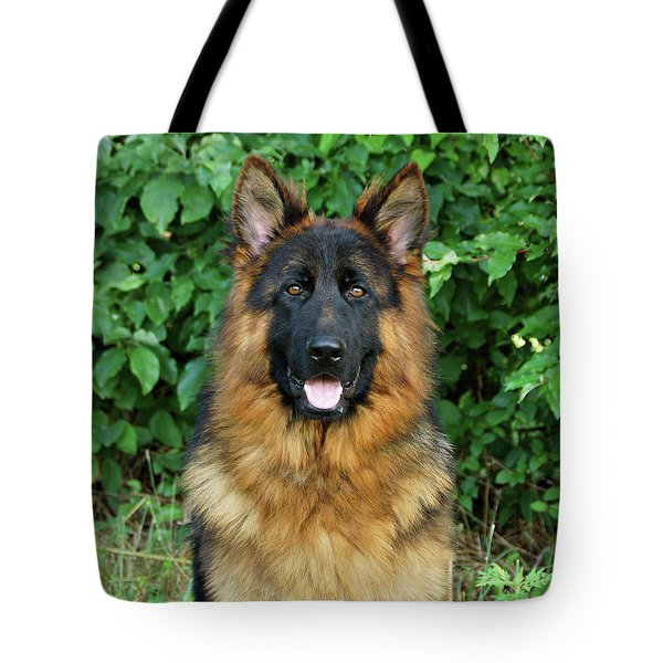 Tote Bag featuring the photograph Oden by Sandy Keeton