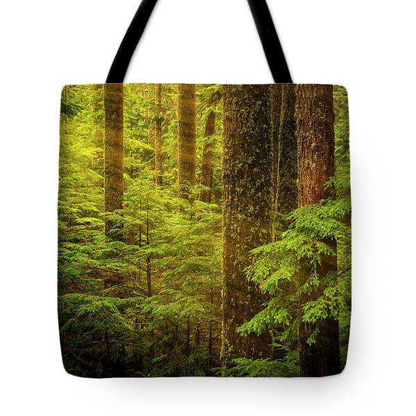 Of Elves And Faeries Tote Bag