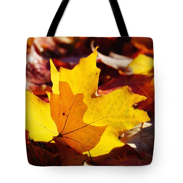 Of Light And Leaves Too Tote Bag