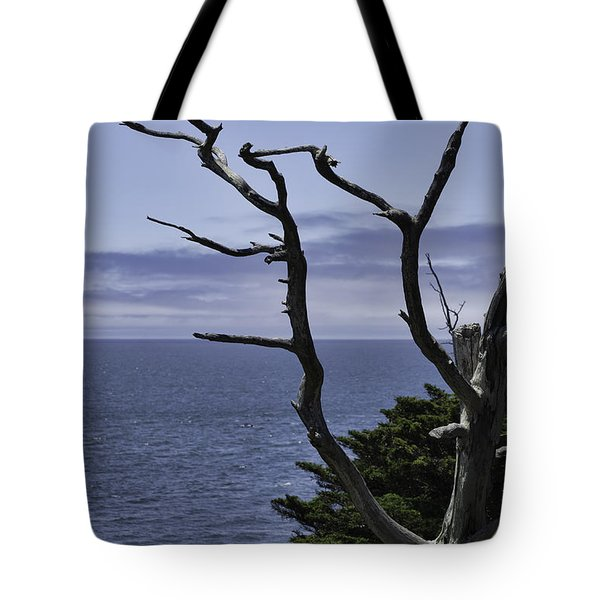 Tote Bag featuring the photograph Off Shore by Judy Wolinsky