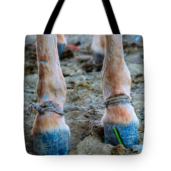 Tote Bag featuring the photograph Off To The Gymkhana  by Jez C Self