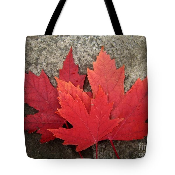 Oh Canada Tote Bag by Reb Frost