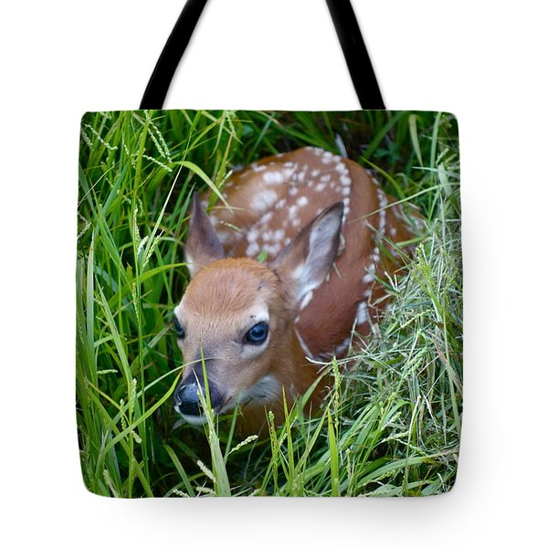 Tote Bag featuring the photograph Oh Deer     I'm Discovered by Sandra Updyke