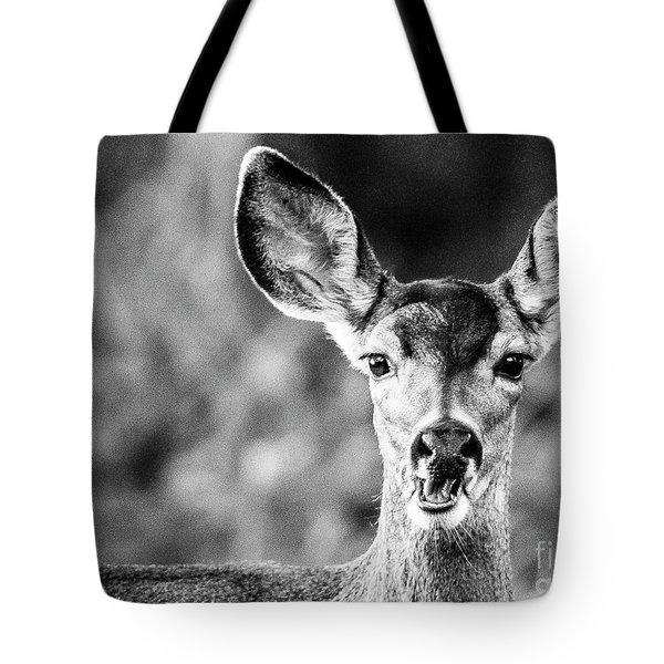 Oh, Deer, Black And White Tote Bag