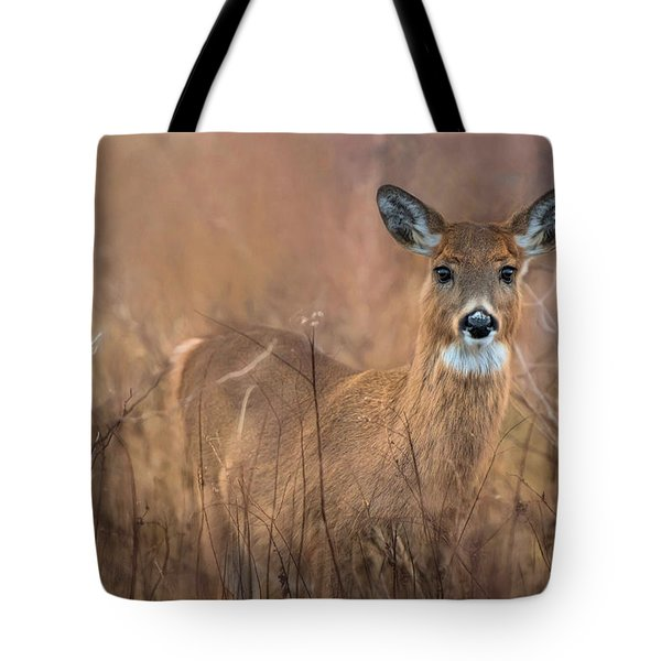 Tote Bag featuring the photograph Oh Deer by Robin-Lee Vieira