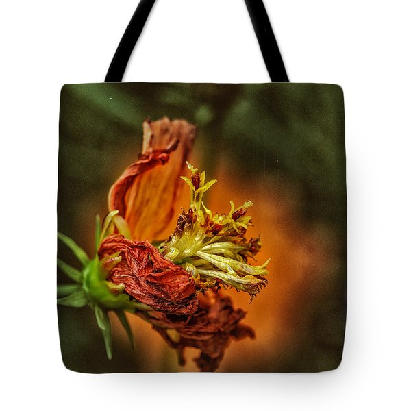 Oh Orange Juice Tote Bag