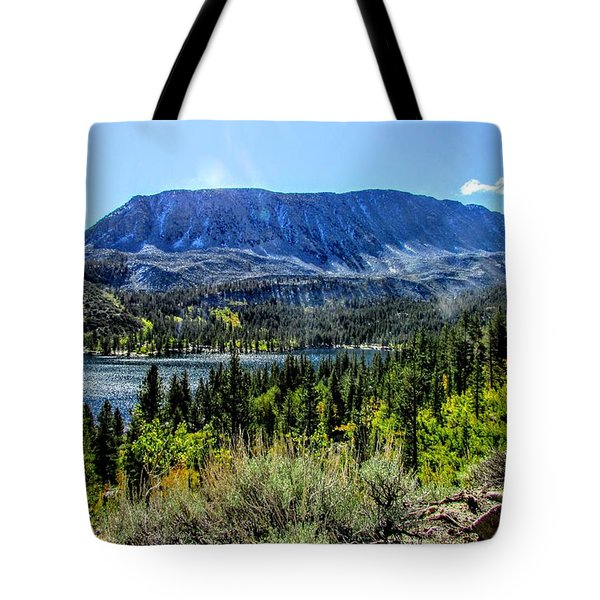 Oh What A View Tote Bag