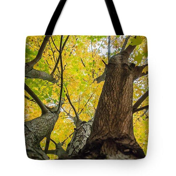 Ohio Pyle Colors - 9687 Tote Bag
