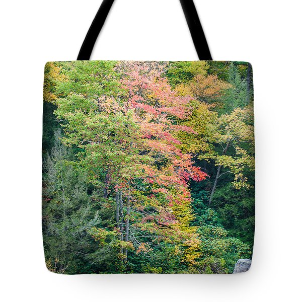Tote Bag featuring the photograph Ohio Pyle Colors - 9709 by G L Sarti